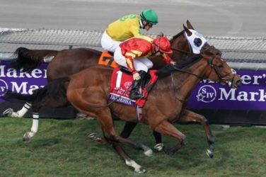 Iridessa wins at the Breeders Cup