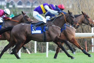 Horse Racing - Latest Exhibition jumping fence at Dublin Racing Festival
