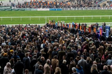 Cheltenham Special Betting Offers